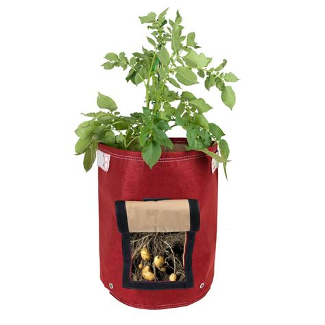 Potato Planter By Planter Bag by Bloem 9 Gal Honey Dew Fabric Potato Planter Bag Pop 25