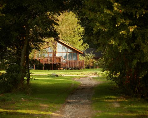 log cabin new year breaks save 10 on a forest holidays escape