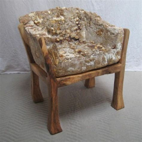 couch mold artist grows stools out of fungus pics adflipoff