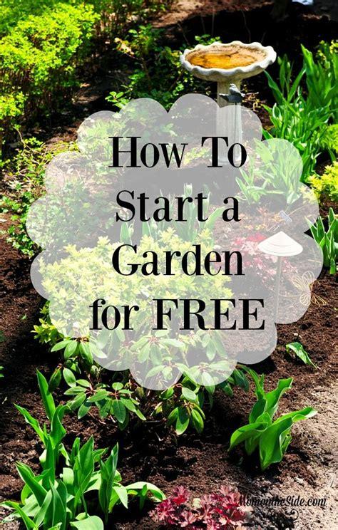 How To Start An Organic Garden by 17 Best Ideas About Starting A Garden On