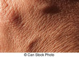 texture up human skin macro epidermis stock picture i3899567 at featurepics up human skin macro epidermis texture