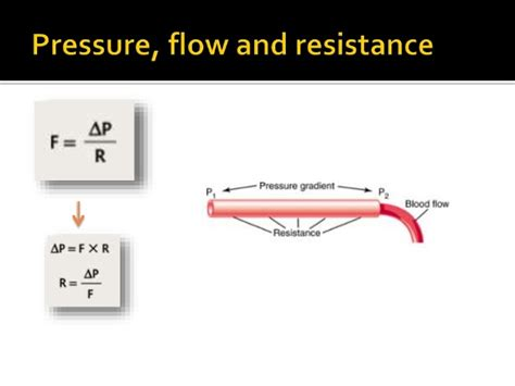 resistance in parallel blood flow resistance in parallel blood flow 28 images чясмчсми humanphysiology2011 06 cardiology