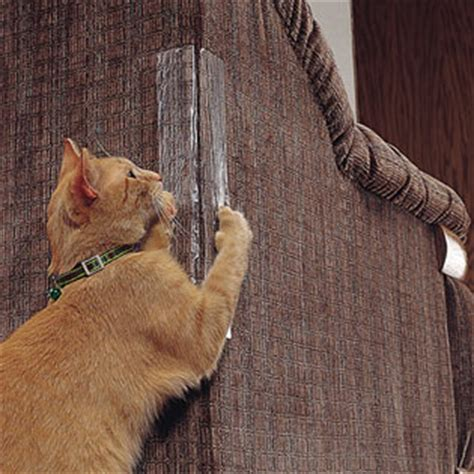How To Get Cats To Stop Scratching Furniture by How To Prevent Cats From Scratching Furniture Melpomene Org
