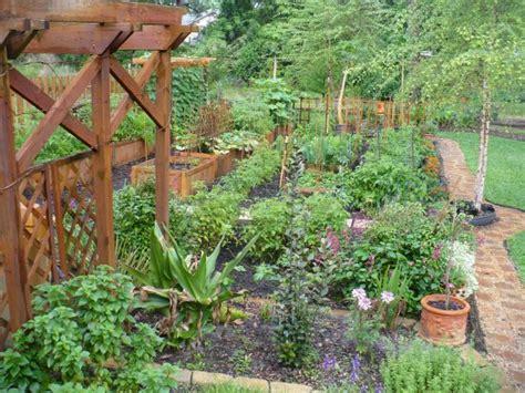 Mavis Mail Amazing Garden Photos From Central Florida Vegetable Gardens In Florida
