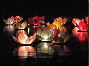 Lotus Thia Lot De 6 Lanternes Flottantes Lotus Thai Multicolor Sky