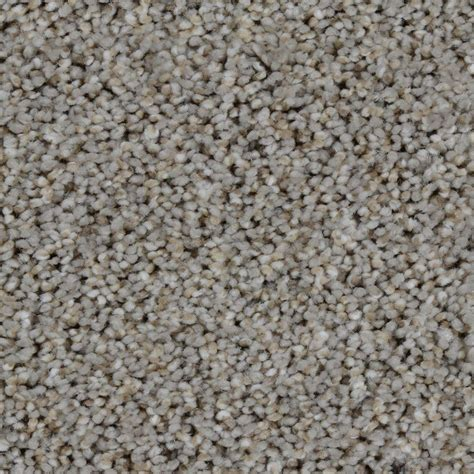 home decorators collection carpet sle braidley in color dried herbs 8 in x 8 in sh home depot 72 hour carpet installation guarantee home