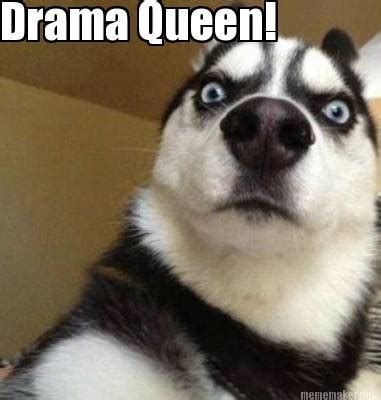 Drama Queen Meme - meme maker a little bird told me its your birthday today