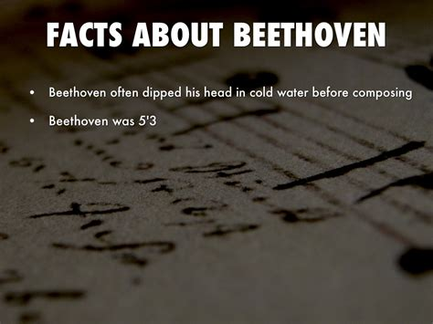 beethoven biography interesting facts ludwig beethoven biography by jason trejo