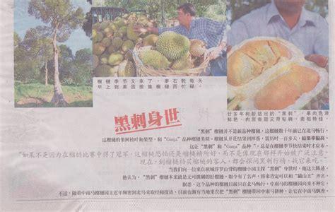 suling hill penangtouru  penang durian
