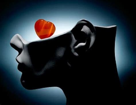 cuore e testa cuore e testa uniti in un pensiero pulsante international