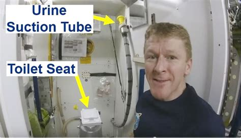 how to use the bathroom in space this is how tim peake goes to the toilet in space market