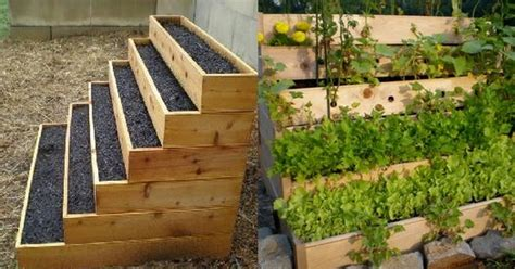 vertical vegetable garden kits vertical vegetable and herbs garden 101 gardening