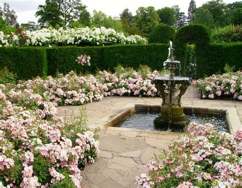 rose themed landscape victorian garden design ludwigs rosesludwigs roses