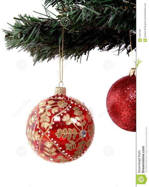 christmas balls hanging on tree branch royalty free stock