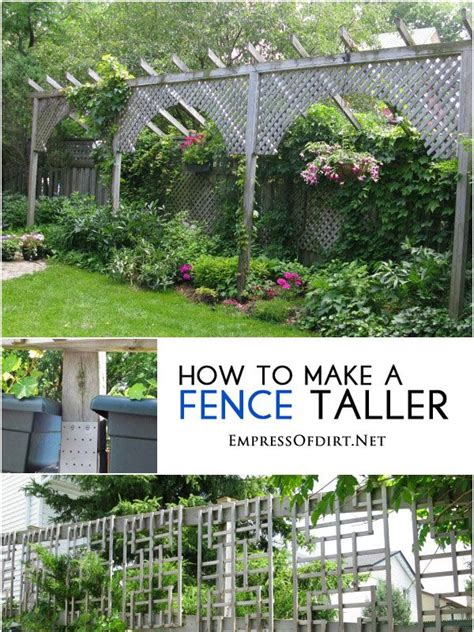 How To Fix A Backyard by Best 25 Garden Privacy Ideas On