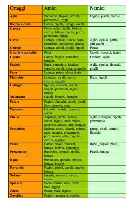 tavola delle calorie consociazione tra ortaggi ecco una tabella con tutti gli