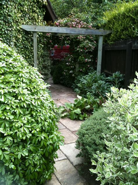 view our work magill garden services