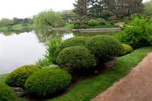 adding winter interest to your midwestern garden