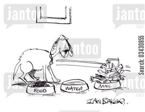 Jo In Pet Bowl Drinkers water bowls humor from jantoo