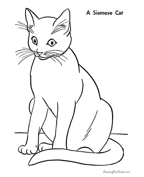 printable coloring page of a cat kitty world kitten pictures to colour