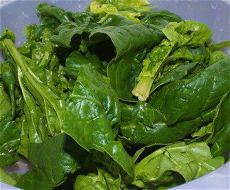 alimentazione naturale alimentazione naturale