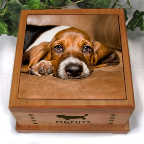 urns for dogs urn