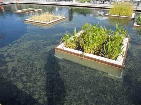 giardino d acqua laghetti d acqua in giardino giardino d acqua laghetti