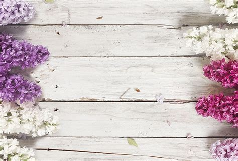 3d Wallpaper For Home Wall India by Shop Wood Background Amp Lilac Flowers Wallpaper In Flowers