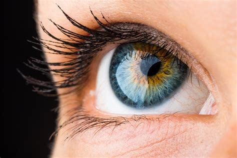 most colored contacts which colored contact lenses are most looking