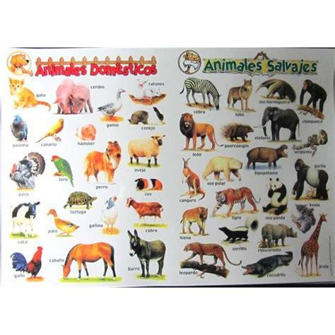 imagenes de animales salvajes y domesticos lamina animales domesticos y salvajes didactikids