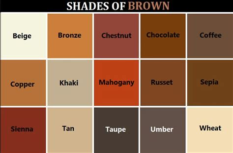 colors of brown shades of brown for thursday doors priorhouse