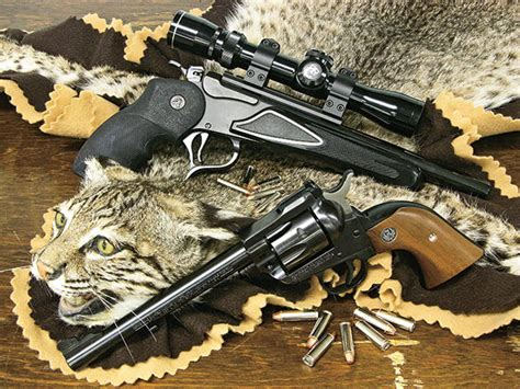 Nevada House by Gats For Cats The Best Guns For Bobcat Hunting Shooting
