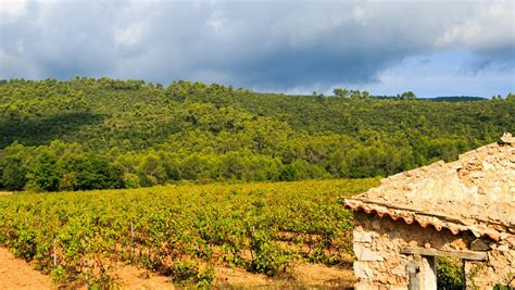 best provence best attractions in provence seeprovence