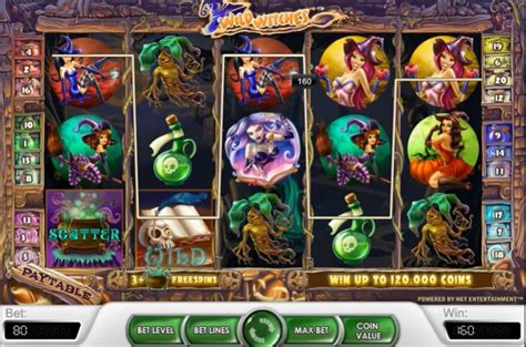 wild witches slot review  netent casino