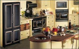 retro kitchen appliance matelic image retro kitchen appliances