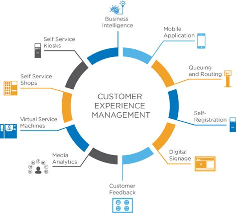 customer experience management payout
