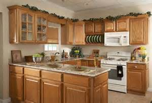 Kitchen Paint Ideas With Oak Cabinets Painting Oak Kitchen Cabinets Home Design Ideas