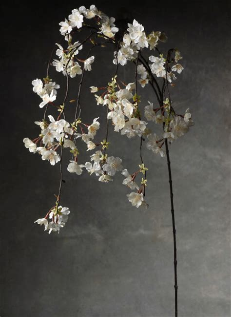 Hanging Cherry Blossom Branches White Silk Artificial 58""
