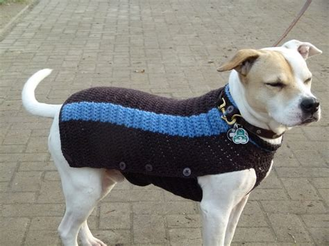 Strickanleitung Hundepullover Chihuahua by Hundemantel Hundepulli H 228 Keln Stricken Neues Vom Bastelschaf
