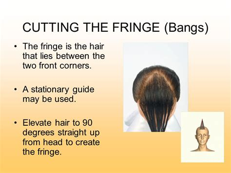 Cutting The Fringe communicating for success ppt