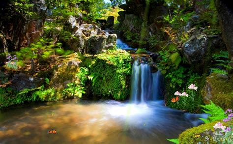 wallpaper nature free download mobile animated nature wallpapers free download for mobile free