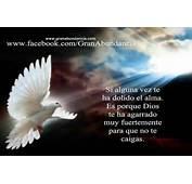 Frases Celebres De Dios Cortas Car Tuning