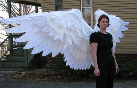 How To Make Paper Wings For A Costume - anatomy of a banner the better of our nature
