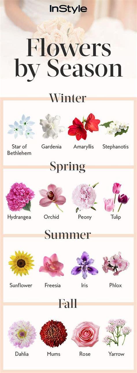 tips for choosing the best flower shop near me miner 17 best flower shop ideas images on pinterest floral