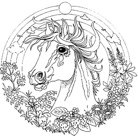 colouring pages of animals amazing amazing animal mandala coloring pages batch