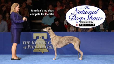 purina show 2017 the national show presented by purina on nbc nothing but