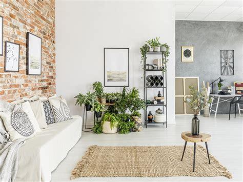 idee originali per la casa 5 idee originali per decorare casa con le piante rivista