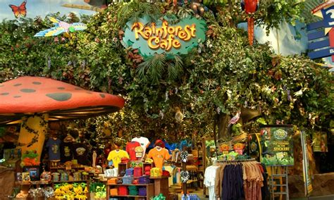 Where To Buy Rainforest Cafe Gift Cards - rainforest cafe in nashville tn groupon