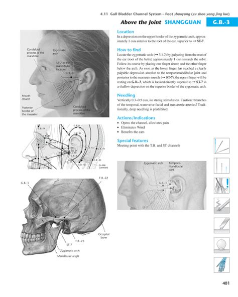 atlas of acupuncture points chiro acupuncture masters acupuncture points database