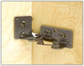 Concealed Hinges For Kitchen Cabinets Kitchen Cabinet Hinges Home Design Ideas